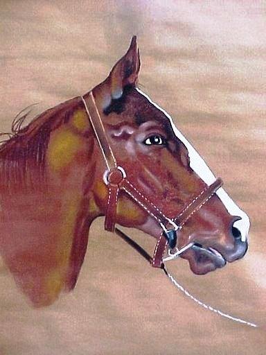 dasPferd
