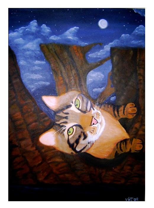 Gato na Árvore 50x70cm